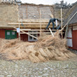 Stock Photo: Thatch roof