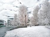 Moscow public garden. Infrared photo — Stock Photo