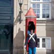 Guardsman on a post — Stock Photo