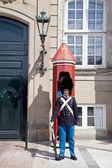 Guardsman on a post — Stock Photo