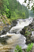 A flat waterfall of Kivach is in Karelia — Стоковое фото