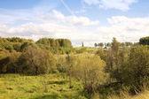 Borodino field — Stock Photo