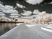 A Riva Lago. fotografia a raggi infrarossi — Foto Stock