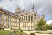 Medieval cathedral in Reims  — Foto Stock