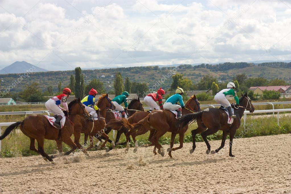 Horse racing,Caucasus  Stock Photo #13242544