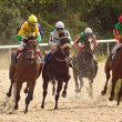 Horse racing — Stock Photo #13275246