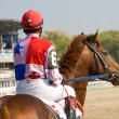 Foto Stock: Beforee horse race