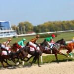 Horse racing — Stock Photo #23747181