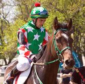 Przed wyścigów konnych. — Zdjęcie stockowe