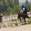 Stock Photo: Horse racing in Pyatigorsk.