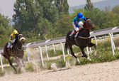 Horse racing in Pyatigorsk. — Stock Photo