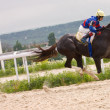 Stock Photo: Horse racing at hippodrome in Pyatigorsk.