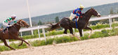 Horse racing at the hippodrome in Pyatigorsk. — Stock Photo