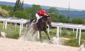 Horse racing at the hippodrome in Pyatigorsk. — Stock Photo