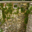 Background of old stone wall texture — Stockfoto