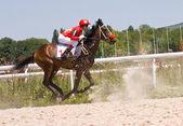 Les courses de chevaux — Photo