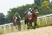 馬のレース — ストック写真