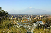 Mountain Ararat — Stock Photo
