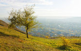 Autumn in Pyatigorsk. — Stock Photo
