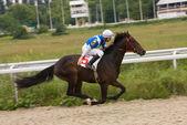 Horse racihg. — Stockfoto