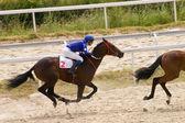 Corridas de cavalos — Foto Stock