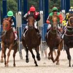 Horse racing — Stock Photo #49321793