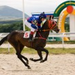 Horse race finish — Stock Photo