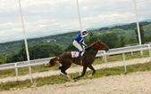 Horse racing — Stock Photo
