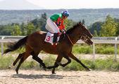 Wyścigi konne — Zdjęcie stockowe