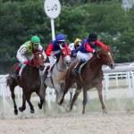 Horse racing. — Stock Photo #6278704