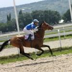 Horse race — Stock Photo #6366617