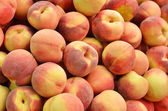 Close up of peaches — Stock Photo