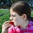 Girl eating the strawberry on farm — Stock Photo
