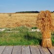 Sheaf of yellow spices in russian rural farm — Stock Photo