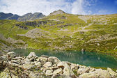 Alpine lake — Foto Stock