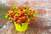 Bouquet of red flowers (Helenium) on the old background — Stock Photo