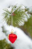 Christmas tree decorations on a pine tree — Stock Photo