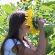 Young girl and sunflower — Stock Video