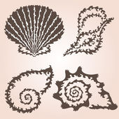 Decorative seashells set — Vector de stock