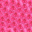 Pink roses background — Foto de stock #29242815