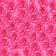 Photo: Pink roses background