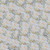White roses background — Stock Photo