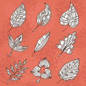 Set of 9 decorative leaves — Stock Vector