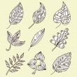 Set of 9 decorative leaves — Imagen vectorial