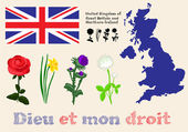 Floral symbols of United Kingdom of Great Britain and Northern I — Stock vektor