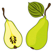 Pear fruits — Stock Vector