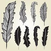 Decorative feathers set — Stock Vector