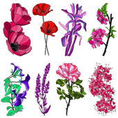Set of decorative flowers — Vector de stock