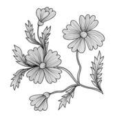 Decorative cornflowers — Stock Vector