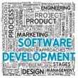 Software development concept in tag cloud — Foto de stock #12226404